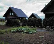 上田公演打ち合わせと・トマトの添え木、と草むしり、野菜より雑草の成長のがはやいからまいる。部屋から畑を…